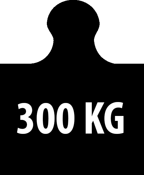 300kg
